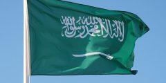 معلومات هامة عن دولة السعودية