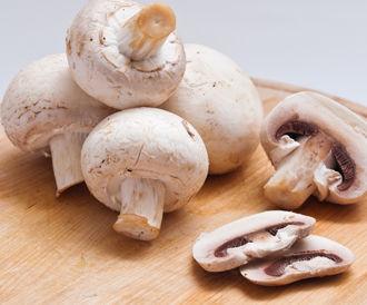 الفطر الأبيض الفطر الأبيض القيمة الغذائية الفوائد العلاجية ووصفات