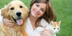 التعامل مع الحيوانات المريضة