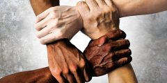 ما هو الفرق بين السلالة والعرق
