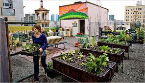 الزراعة الحضرية
